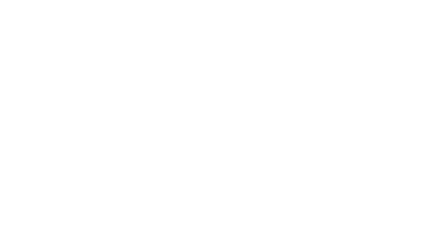 Bluesock Hostels